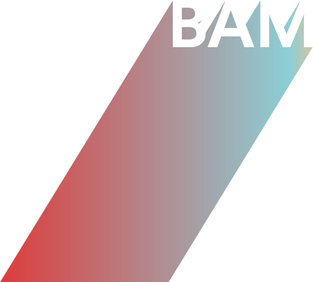Agence BAM projects