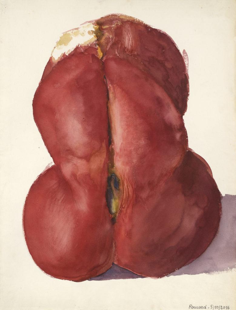 Claude Roucard - Tomates