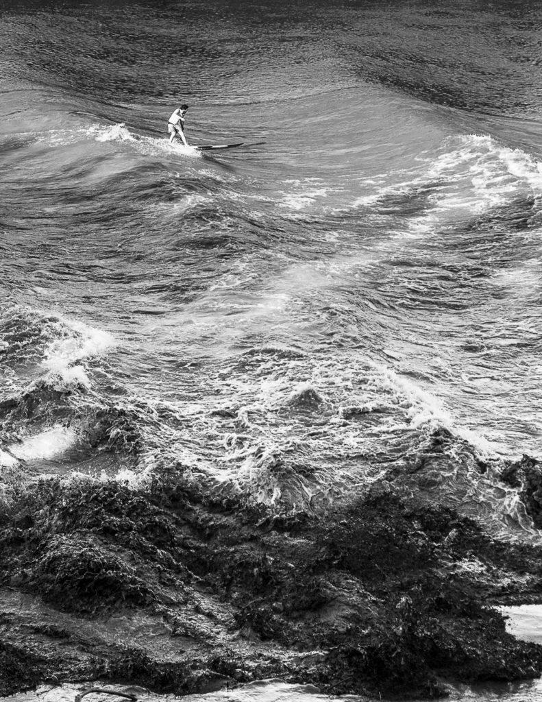 Mud Surfers