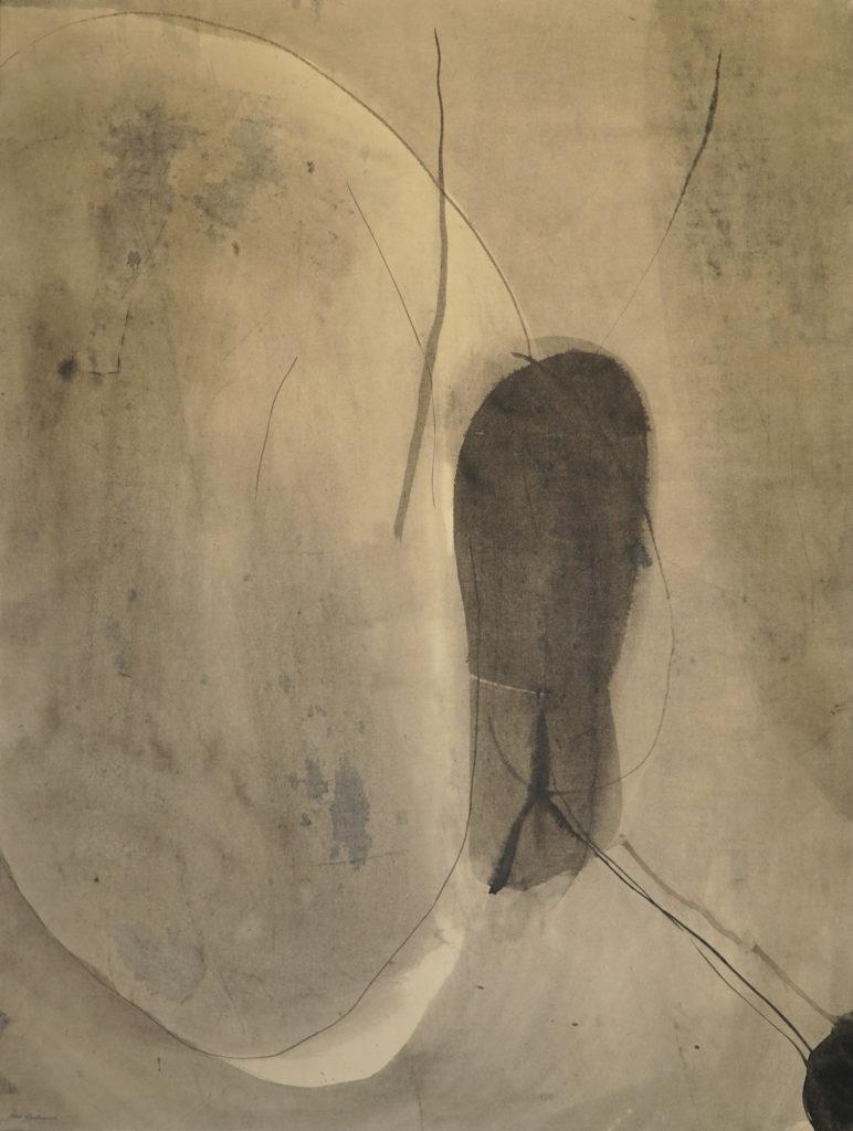 Sho Asakawa -