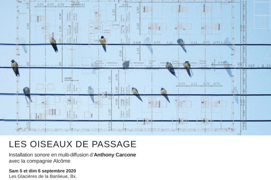 LES OISEAUX DE PASSAGE / Installation sonore d'Anthony Carcone